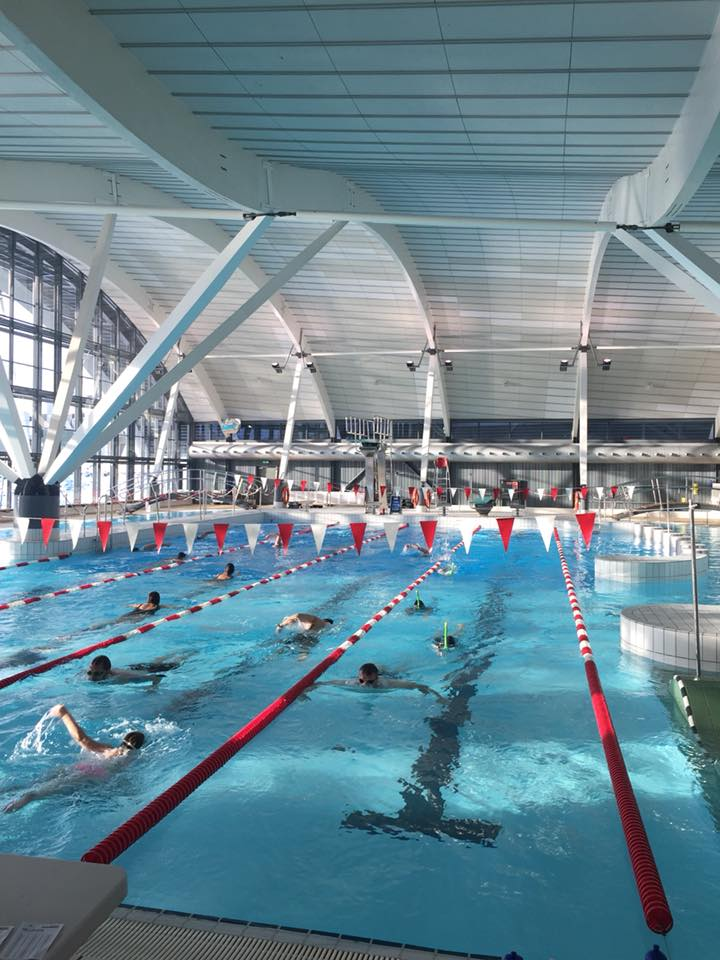 Svømmehallen Malik deltager i Den Store Svømmedag 2019.