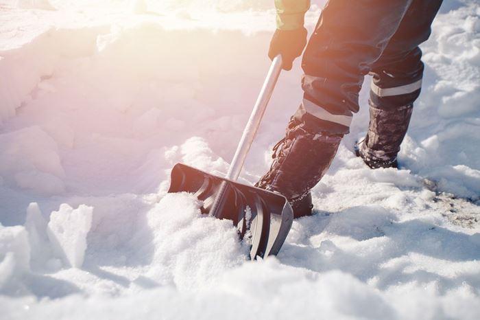 Skal du have ryddet sne? Ring til snerydningslinjen