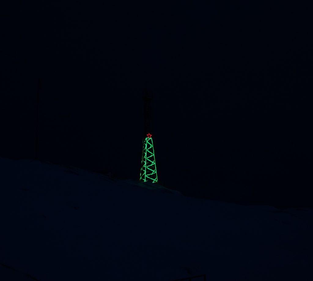Har du set det store juletræ?